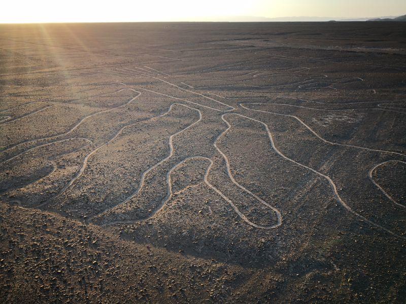 Nazca-Tree
