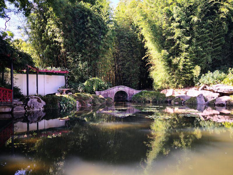 Der Chinesiche Garten